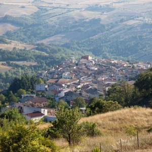 Panoramamini